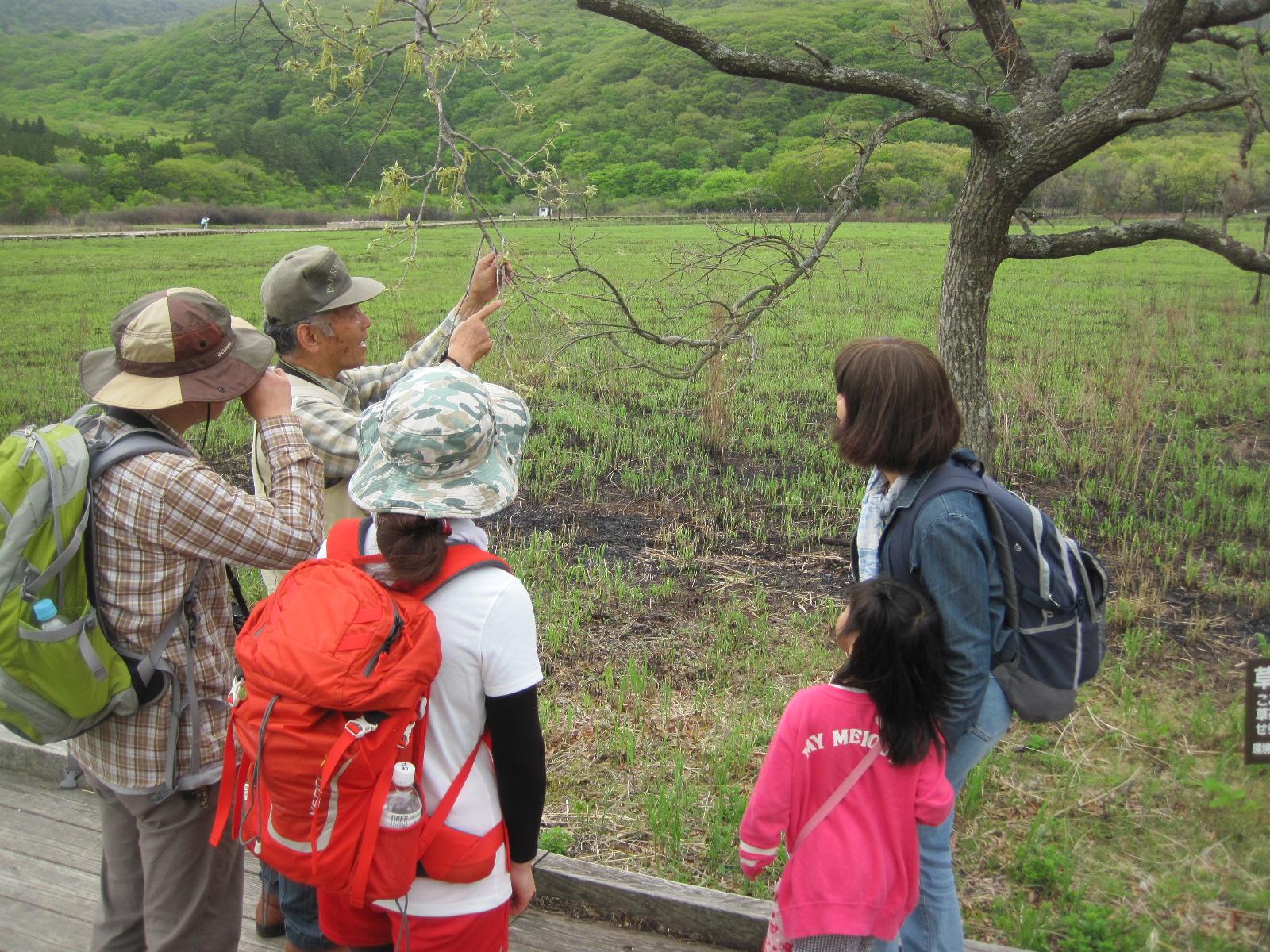 タデ原の自然観察会