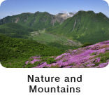 Nature and mountains in Kuju