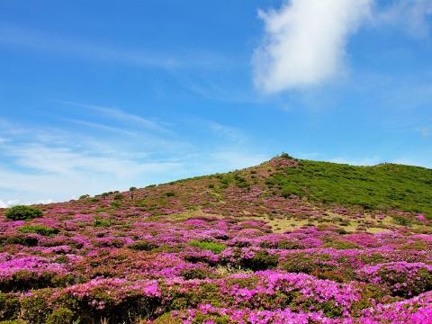 Makinoto Pass ~ Mt.Ogigahana